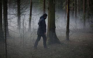 «Нелюбовь» Звягинцева попала в шорт-лист Оскара