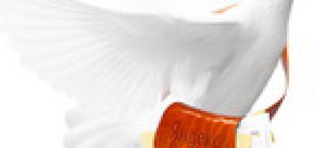 Яндекс обновил свой почтовый сервис