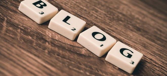 5 правил выбора хорошего домена