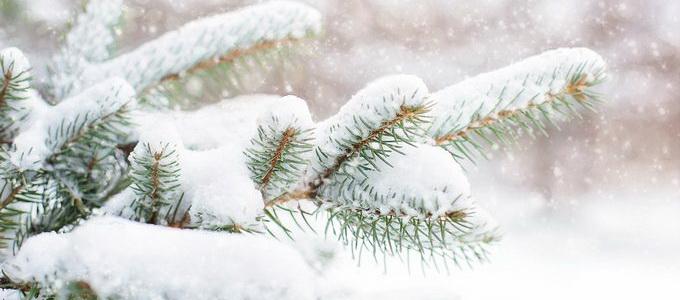 зимние праздники в перми 2020